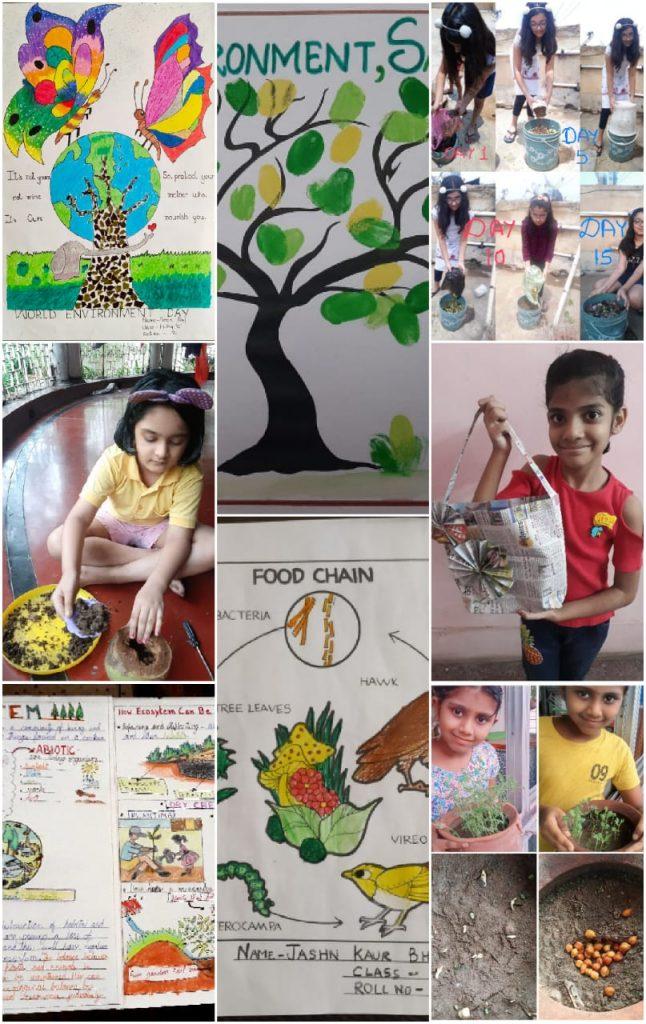 Environment Club Activities